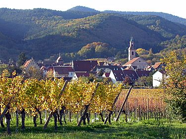 Arriving by the Alsace wine route. The first glimpse you get is Riquewihr nested in a small valley at the foot of the Vosges mountains