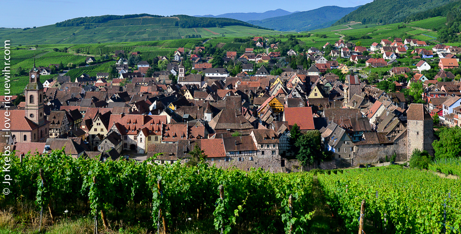 View from the height of the Schoenenbourg famous vineyards... Riquewihr in the background, the Vosges and more vines!