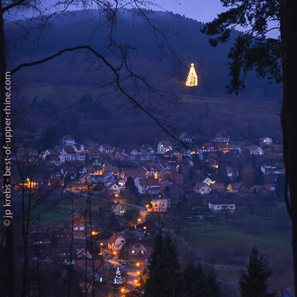 A giant Christmas fir is lit at the edge of the forest of Grendelbruch near the Mount Saint Odile.