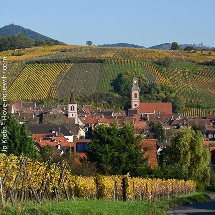 The best vineyards of Alsace are located on hills carrying a Grand Cru appellation. Riquewihr has 2 grands crus: Sporen and Schoenenbourg.